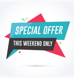 special offer banner vector image