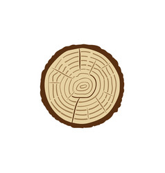 Trunk cross-section with tree rings colored vector