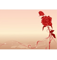 valentines background with rose vector image