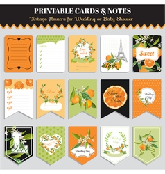 Vintage Orange Flowers Card Set Birthday vector