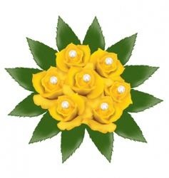 yellow roses with pearls vector image