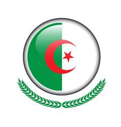 algeria flag button algeria flag icon of algeria vector image