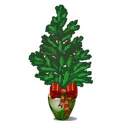 Cartoon office fir tree growing in ceramic pot in vector