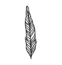 Decorative black feather vector