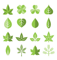 Leaves icon set in flat style vector