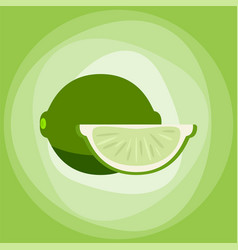lime with green slice citrus isolated background vector image