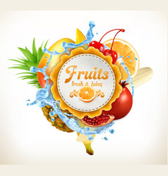 Fruits label vector image