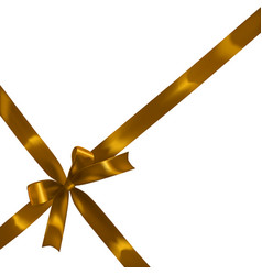 golden realistic bow vector image