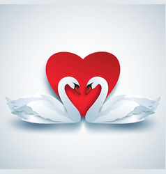 valentine background with two white 3d swans and vector image
