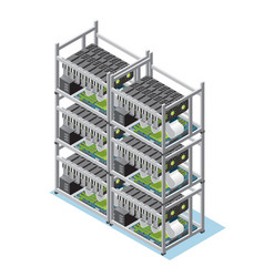 Isometric crypto currency mining farm concept vector