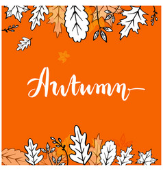 autumn maple leaf orange background image vector image
