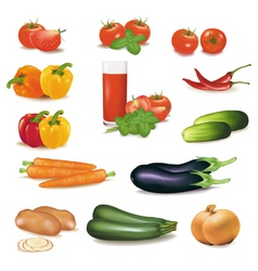 big group of vegetables vector image