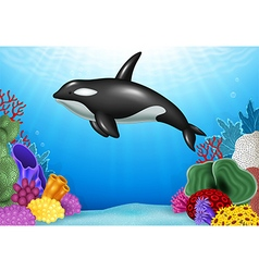 Cartoon Killer whale with Coral Reef Underwater vector