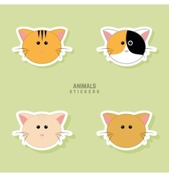 Cute cats Faces vector