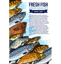 Fresh fish catch poster for market vector
