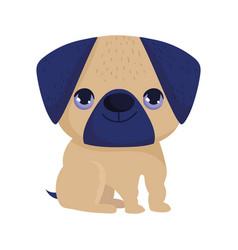 little pug dog domestic sitting cartoon pets vector image