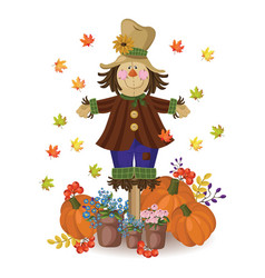 Scarecrow doll cute drawing pumpkin and vector