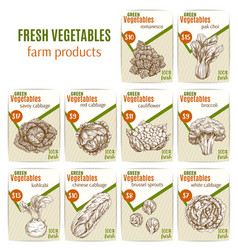 vegetables or veggies sketch price menu vector image