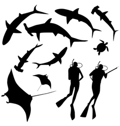 Shark and diver swimming with sharks vector image vector image