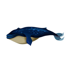 A big blue whale isolated vector