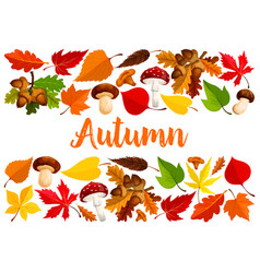 Autumn falling leaf forest mushrooms poster vector