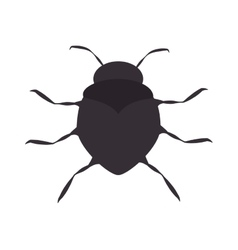 Bug beetle insect vector
