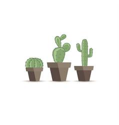 Cactus in a flower pot vector