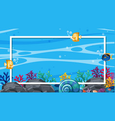 Frame design template with fish swimming in vector