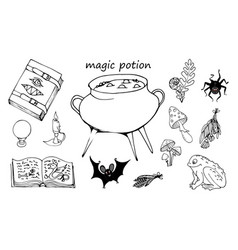 magic potion vector image