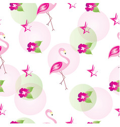 seamless pattern with flamingo pink flowers star vector image