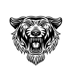 tiger head front view in vector image