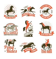 Horse breeding labels emblems set vector image