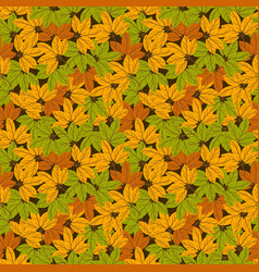 autumn pattern colorful leaves background vector image