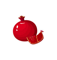 cartoon fresh pomegranate isolated icon on white vector image