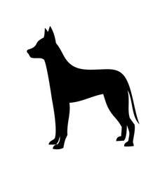 dog icon dog breed vector image