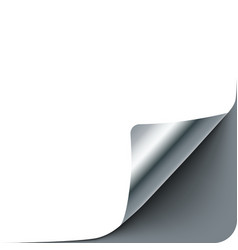 empty paper sheet with silver gray curl corner vector image
