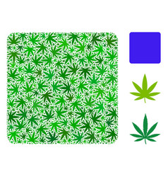 Filled square composition of hemp leaves vector