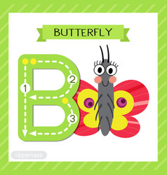 Letter b uppercase tracing colorful butterfly vector