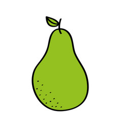 pear fresh fruit drawing icon vector image