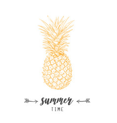 Pineapple yellow skech letitering summer vector