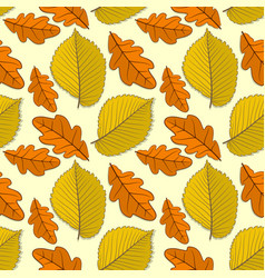 Seamless pattern with oak and elm autumn leaves vector