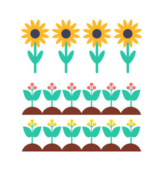 sunflower and berry bush on garden bed set vector image