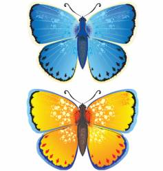 yellow and blue butterfly vector image vector image