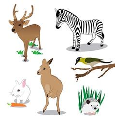 Wildlife vector image vector image