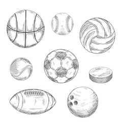 Sporting balls and hockey puck sketch icons vector image vector image