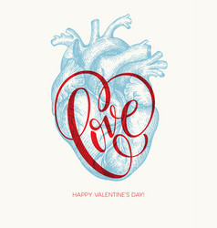 valentines day card with human heart and love vector image