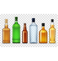 Alcohol drinks in bottles isolated high spirits vector