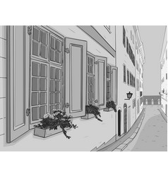 beautiful narrow city street with flowers window vector image