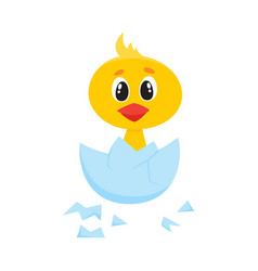 cartoon cute chick character hatching vector image
