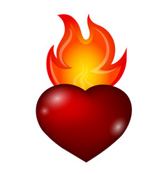 fire and heart vector image